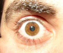 eye-am-small.jpg